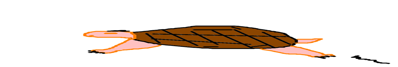 Tatu Selvagem